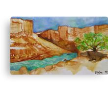 Soap Creek Canvas Print