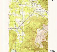USGS Topo Map Washington State WA Lawrence 241956 1952 24000 by wetdryvac