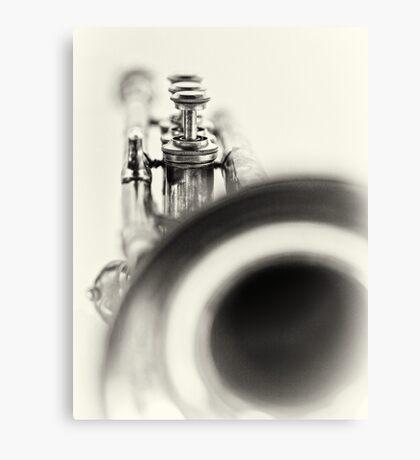 Solo... Canvas Print