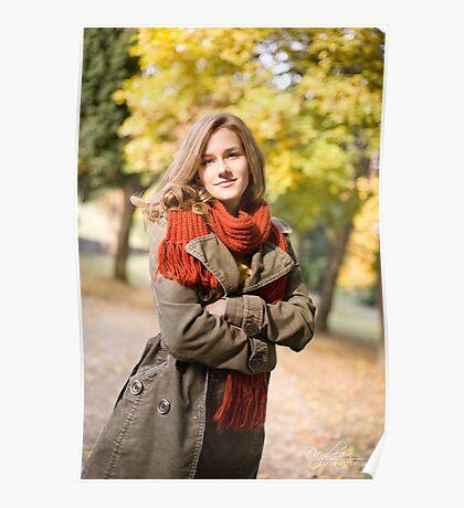 Autumn colors. Poster
