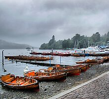 Windermere by Irene  Burdell