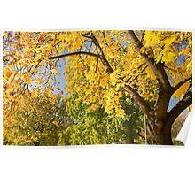 Autumn serenity. Poster