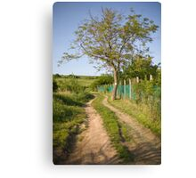 Rural tranquility. Canvas Print