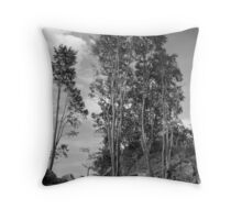 Torn up after the storm. Throw Pillow