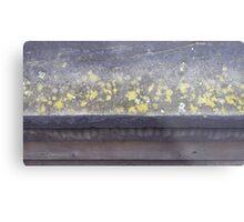 Lichen ledge Metal Print
