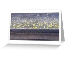 Lichen ledge Greeting Card