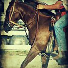 Run For The Finish Line, Barrel Racing by angelandspot