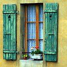 Come to my Balcony! by Vivek Bakshi
