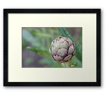 Weeds Can be Beautiful Too 03 Framed Print