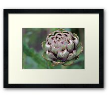 Weeds Can be Beautiful Too 04 Framed Print