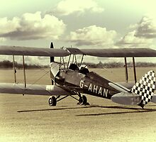 Tiger Moth by Ian Merton