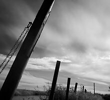 Poles by SunDwn