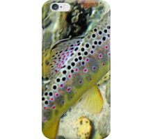 Michigan Brown Trout iPhone Case/Skin