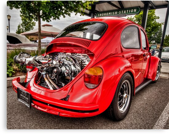 Bug Zapper by Steve Walser