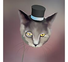 Dapper Cat About Town Photographic Print