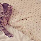 My Nap Companion by Ana  Eugénio
