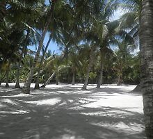 Saona Island by karenkirkham