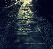 Path to where? by Christine Hingley