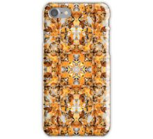 Collage of Fall Colors iPhone Case/Skin