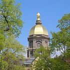 Golden Dome-Notre Dame by NAH Photography