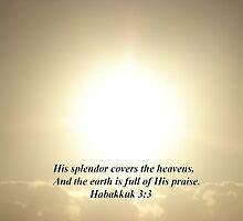 """""""Habukkuk 3:3""""  by Carter L. Shepard by echoesofheaven"""