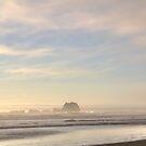 Foggy Evening by Cynthia Broomfield