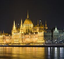 The parliament by exvivo