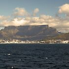 Cape Town From Robin Island - South Africa by Paul Campbell Psychology