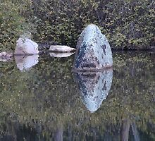 Rock Reflections, Chinese Garden, Lambing Flat, Via Young by muz2142