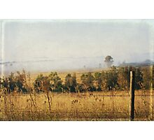 Foggy Hunter Valley fence Photographic Print