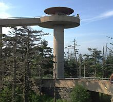 Clingmans Dome by barnsis