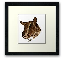 """Toggenburg""  by Carter L. Shepard Framed Print"