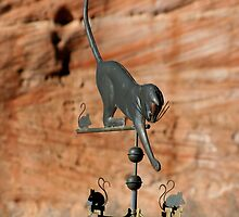 Cat and a Weathervane by KelseyGallery