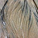 Sand Patterns 2 by Patricia  Knowles