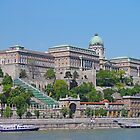 The Royal Palace, Budapest by Graeme  Hyde