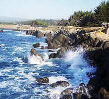 Fort Bragg Coast Line by Shaneface