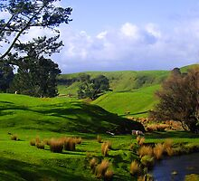 New Zealand Countryside by stesand