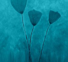 Tall Poppies-blue by Suzanne  Carter