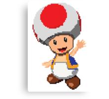 Pixel Toad Canvas Print