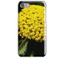 Yellow Yarrow Macro iPhone Case/Skin