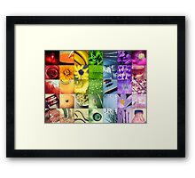 A Year of Colour Framed Print