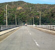 Trucks on a long straight bridge with a forested hill as the background by ashishagarwal74