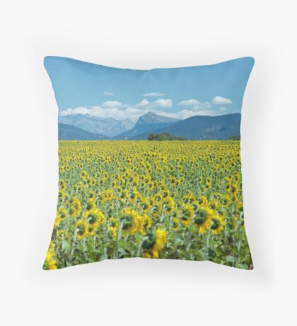 In the footsteps of Van Gogh Throw Pillow