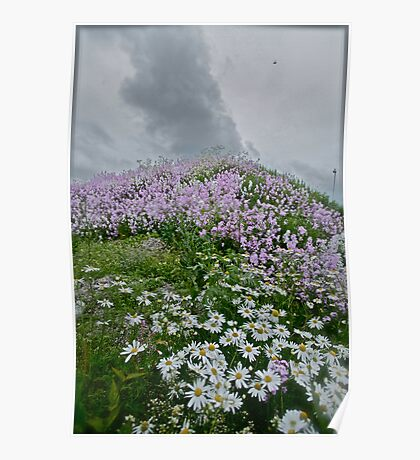 Landscape and Floral Pastel Paintings . Norway .Nordland . june 2012. by Andy Brown Sugar. Featured in Eastern European Art. Thx! Poster