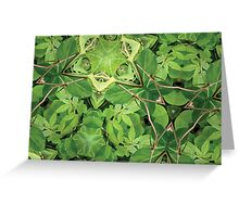 Prismatic Foliage 29 Greeting Card