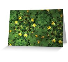 Prismatic Foliage 35 Greeting Card
