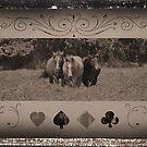 the 3 amigos by Kristen O'Brian