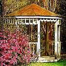 Gazebo Reflection by Kathy Baccari
