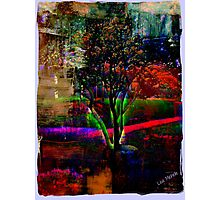 Psychedelic Outdoors Photographic Print