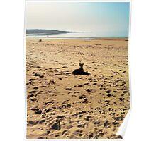 Beach. Poster
